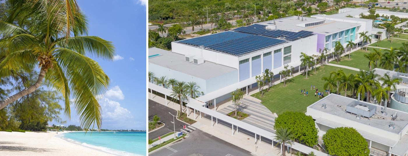 Palm tree on beach left photo, exterior aerial Cayman school on right